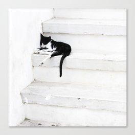 Black on White 2 Canvas Print