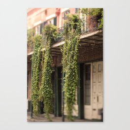 Down in the Quarter Canvas Print