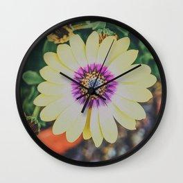 bright African daisy Wall Clock