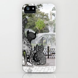 Foray to Forsyth iPhone Case