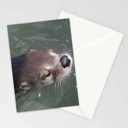 Otterly Adorable Stationery Cards