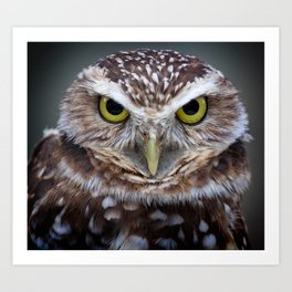 Are you talking to me? Art Print