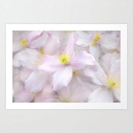 Soft Flora Art Print
