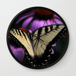 Monarch Butterfly On A Cone Flower  Wall Clock