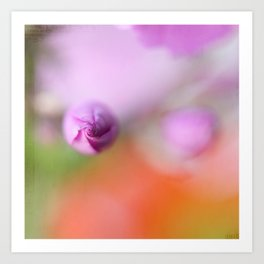 PHLOX IN COLORD BOKEH Art Print