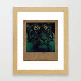 Hidden Tiger Framed Art Print