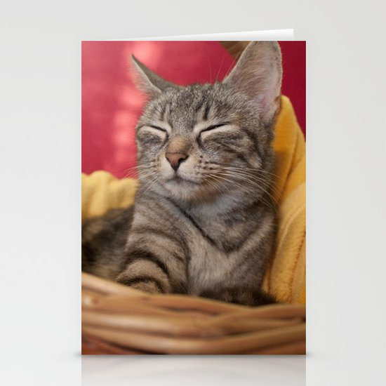 Cat photography Stationery Cards