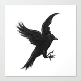 Crow & Alfred Canvas Print
