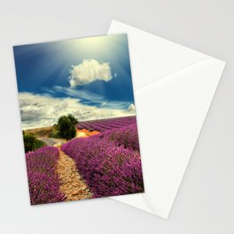 Beautiful image of lavender field Stationery Cards