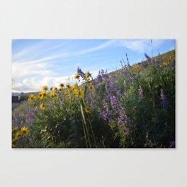 Flowers on Flowers - Winthrop, Eastern Washington State Canvas Print