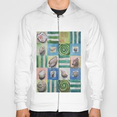 Shell and stripes Hoody