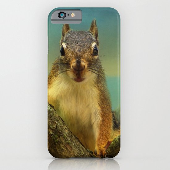 Little Red Squirrel iPhone & iPod Case