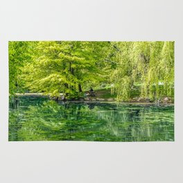 Central Park Reflection Pond Rug