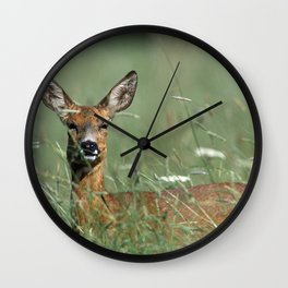 ROE DEER IN THE MEADOW Wall Clock