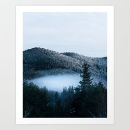 Mysterious fog trapped in winter spruce forest Art Print
