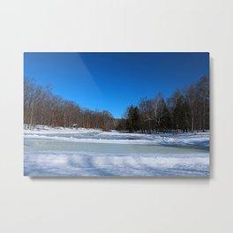 Oak Openings in Winter Metal Print