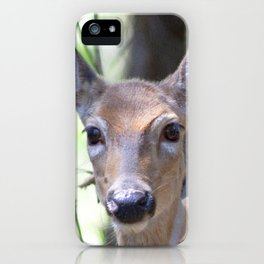 Watercolor Deer, Eastern Whitetail 12, Herrington Manor, Maryland, Timidity iPhone Case