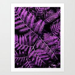 Purple Bracken Art Print