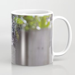 Spiderweb Coffee Mug