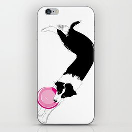 Disc Dog - Border Collie iPhone Skin