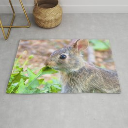 Watercolor Rabbit, Eastern Cottontail 01, Middletown, Maryland Rug