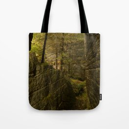 Everything is Magic Tote Bag