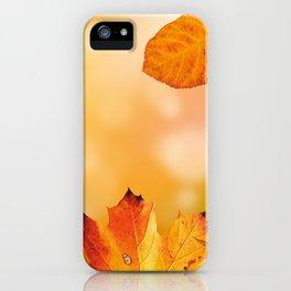Autumn2 iPhone Case