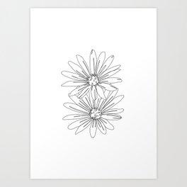 Botanical illustration line drawing - Daisies White Art Print