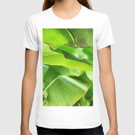 Green palm leaves | Minimalist nature photography T-shirt
