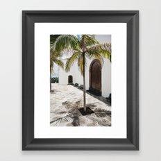 Palm tree growing in the street. La Palma, Canary Island. Framed Art Print