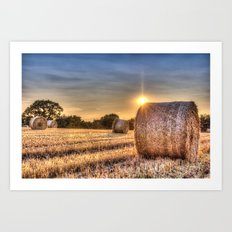 Summer Evening Farm Art Print