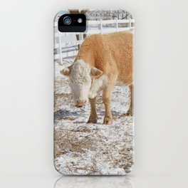 Christmas Hereford iPhone Case