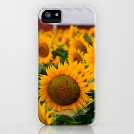 Red Barn and Sunflowers iPhone Case