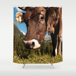 cute cow close Shower Curtain