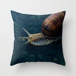 Blue Snail Throw Pillow