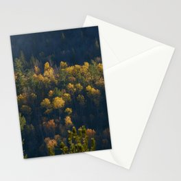 Autumn in Canada, marvelous maple trees Stationery Cards