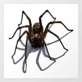 SPIDER Kunstdrucke