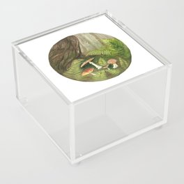 Forest Magic Acrylic Box