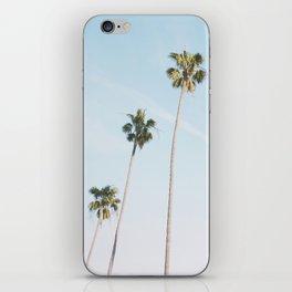 Beach Palms iPhone Skin