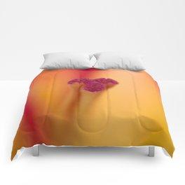 Lily Glory Comforters