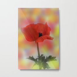 the beauty of a summerday -12- Metal Print