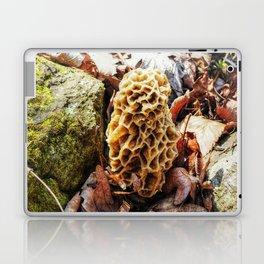 Morel Mushroom in the Wild Laptop & iPad Skin