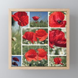 Poppies Collage Framed Mini Art Print