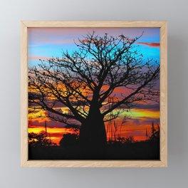Candy Colour Sunset thru Boab Framed Mini Art Print