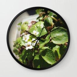 WaterBless Wall Clock