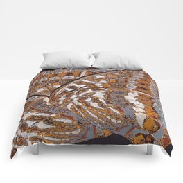 Pasha Butterfly Wing Comforters