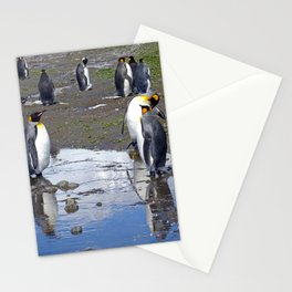 King Penguin Reflection Stationery Cards