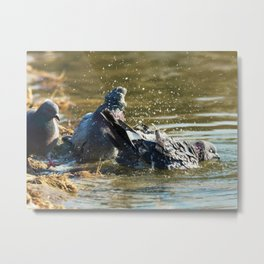 It should be done like this! Metal Print
