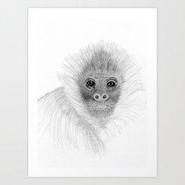 Frank, the Spider Monkey, greyscale Art Print