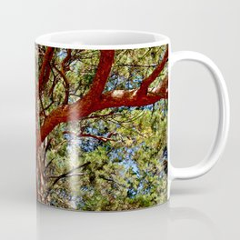 Autumnal lure of the forest Coffee Mug
